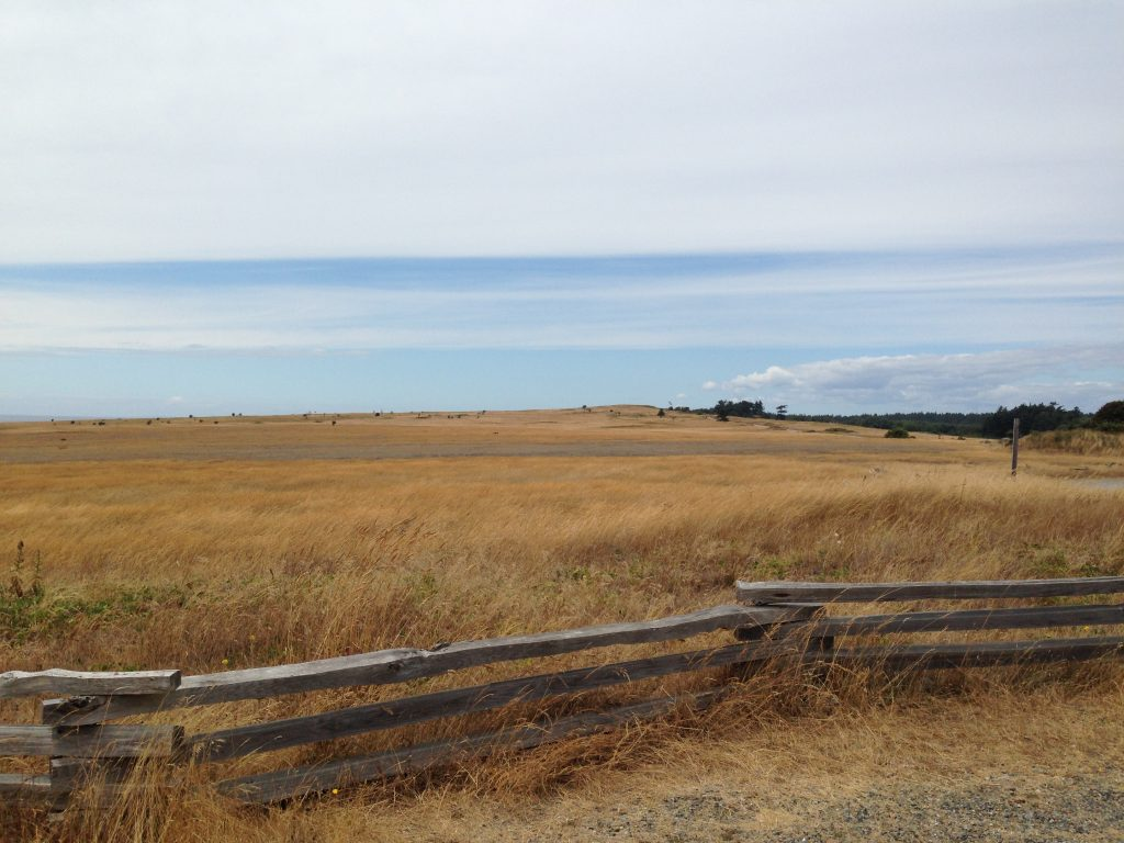 The bleak prairie of American Camp on San Juan Island, PNW - LifeBeyondBorders