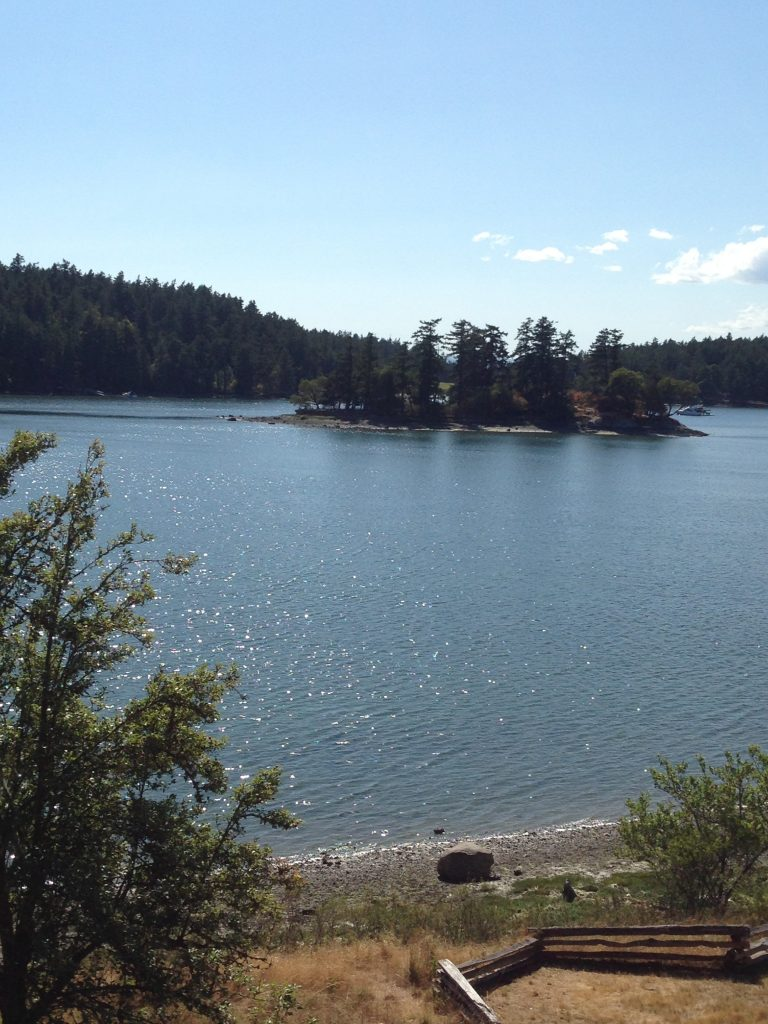 View from English Camp, Garrison Bay, San Juan Island