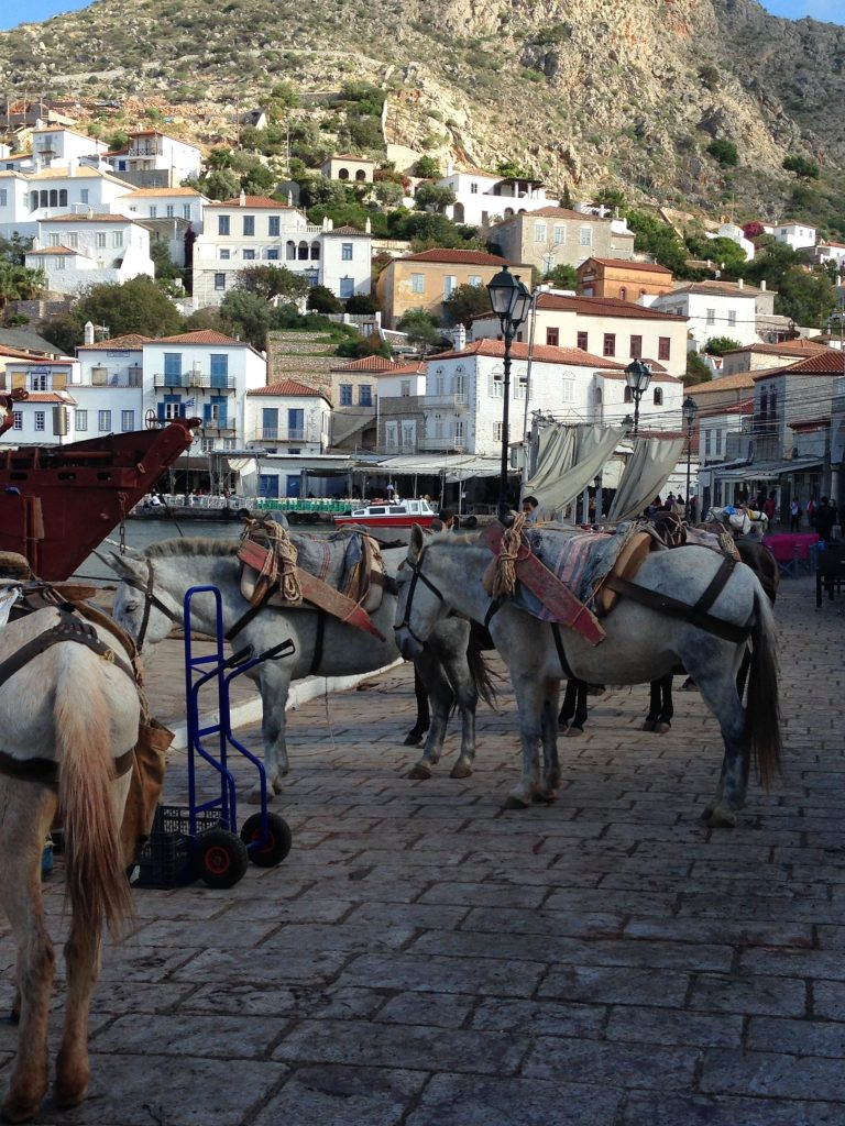 It's a donkey's life. Everyday scene on Hydra - the first stop on Olympic Cruise's One Day, Three Islands cruise. LifeBeyondBorders