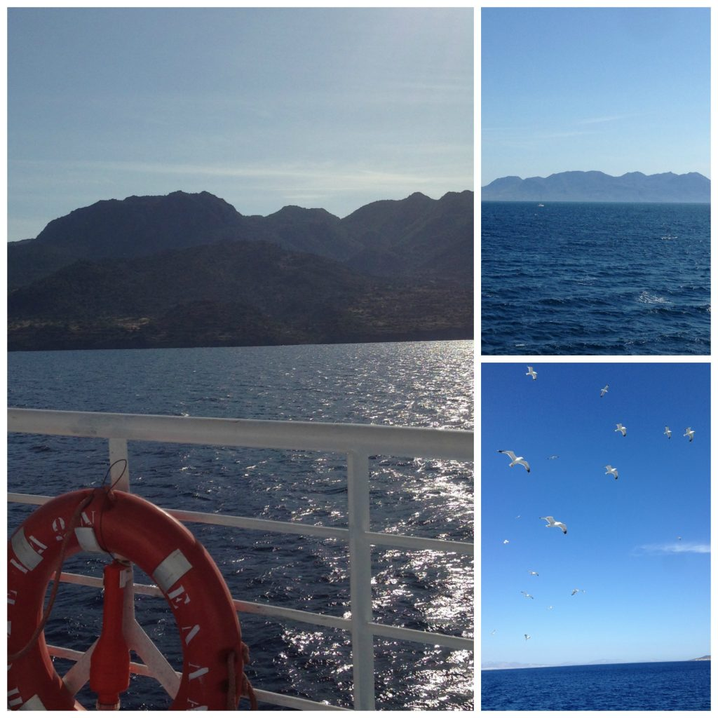 The journey to Poros and Live-Bio