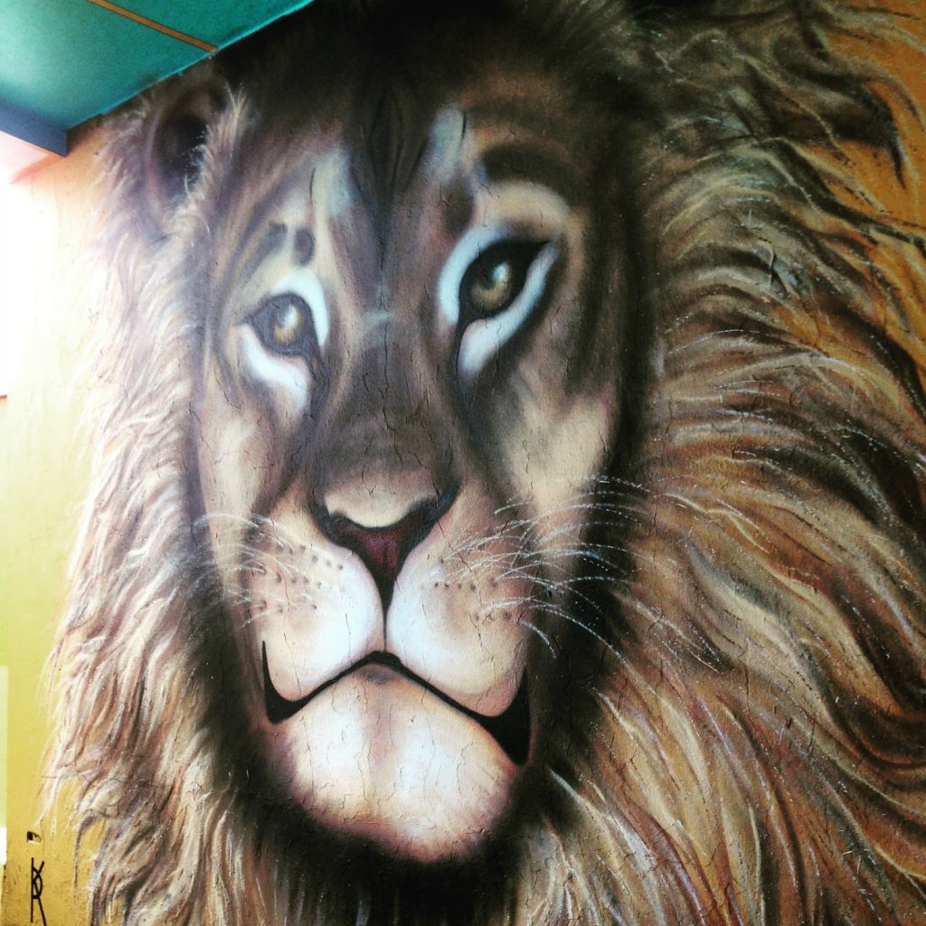 Cecil the Lion street art in Reykjavik, Iceland?