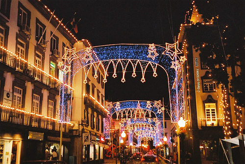 madeira at christmas photo