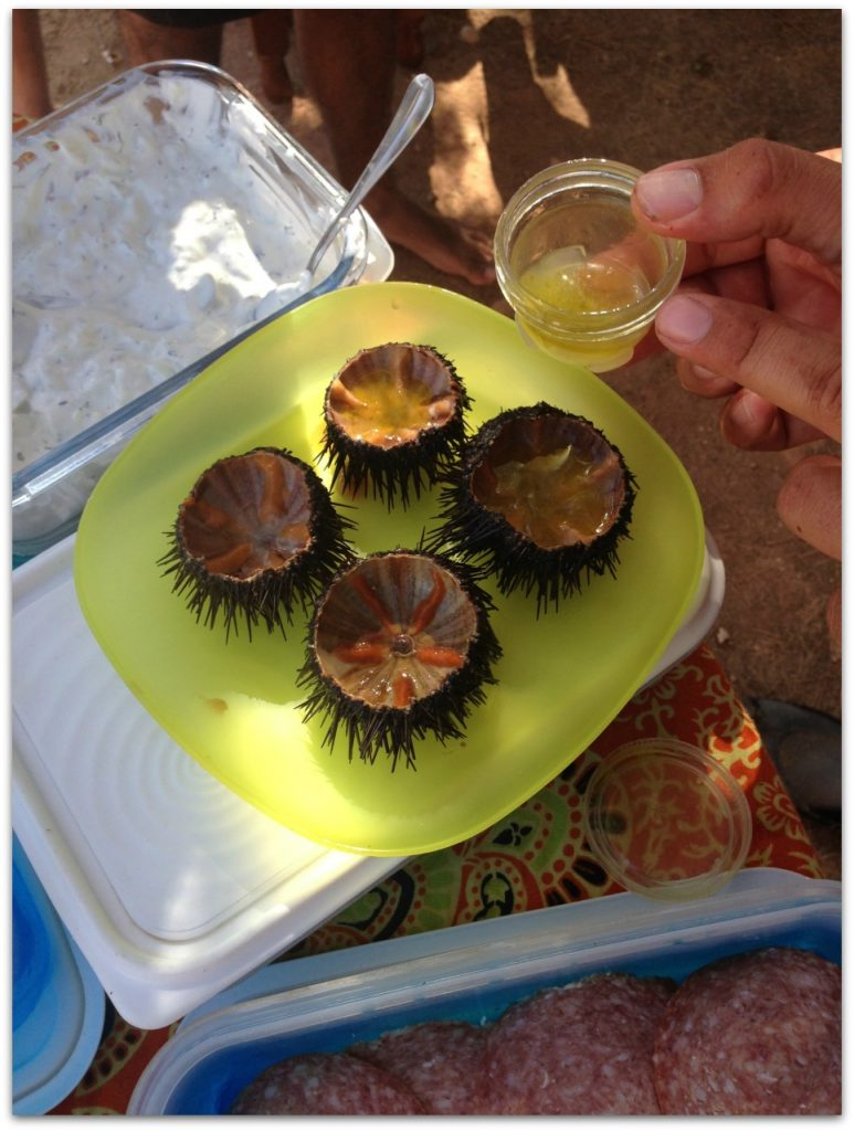 Trying the sea urchins with Mykonos Sea Kayak. Life Beyond Borders