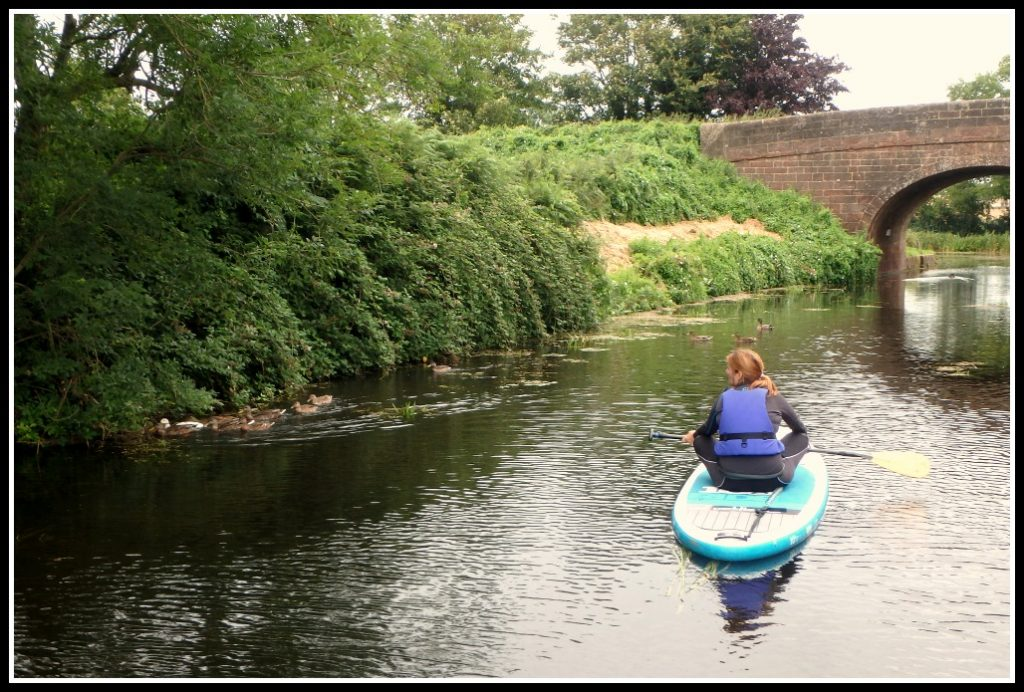 Enjoying the wildlife whilst paddle boarding along the Grand Western Canal - Devon - LifeBeyondBorders
