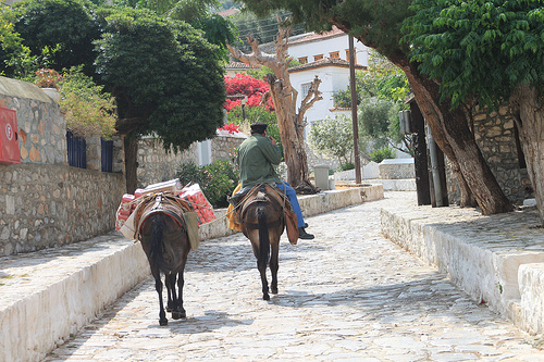 A local going about his business on Hydra island, Greece