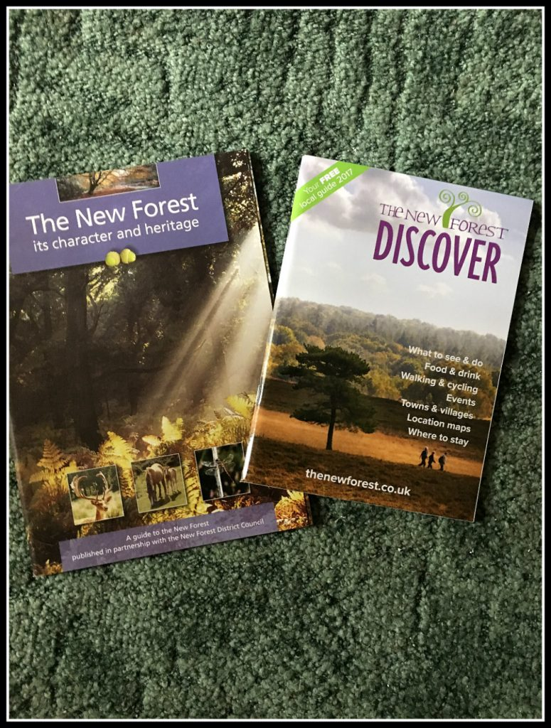 The New Forest Activities - beauty in southern England - LifeBeyondBorders