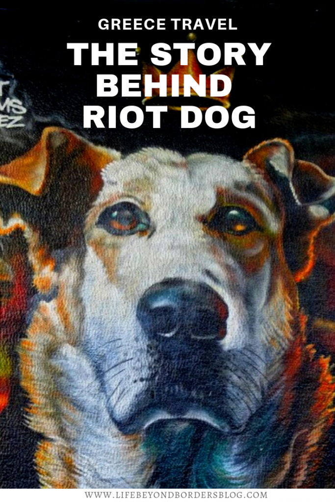 The True Story of Riot Dog of Athens - LifeBeyondBorders